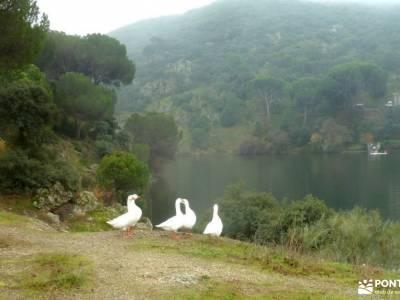 Garganta Picadas_Via Verde Alberche;fin de semana turismo rural senderismo romántico